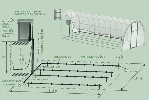 Теплицы-парники - Система полива в теплице: виды и особенности